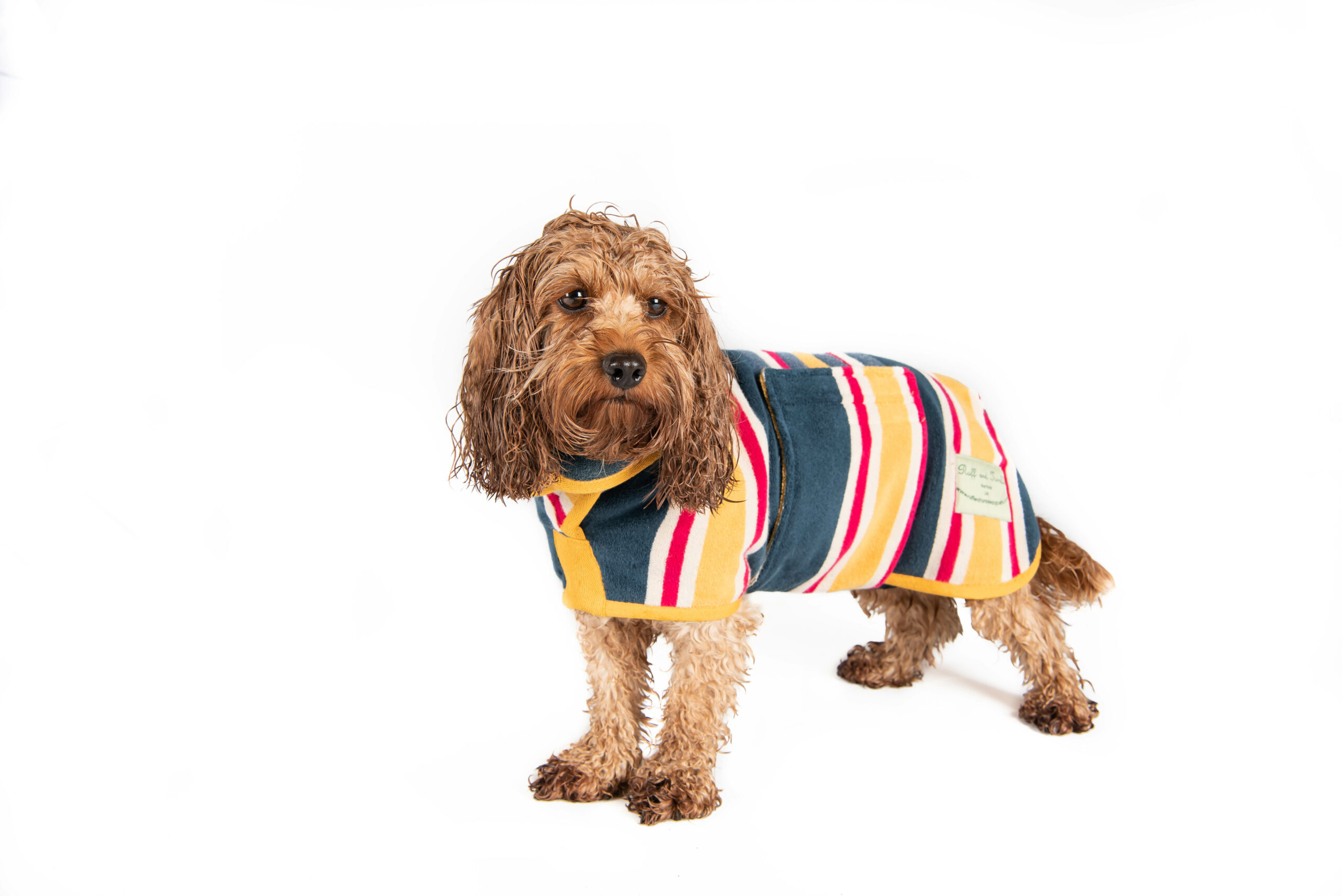 Design Collection Dog Drying Coats