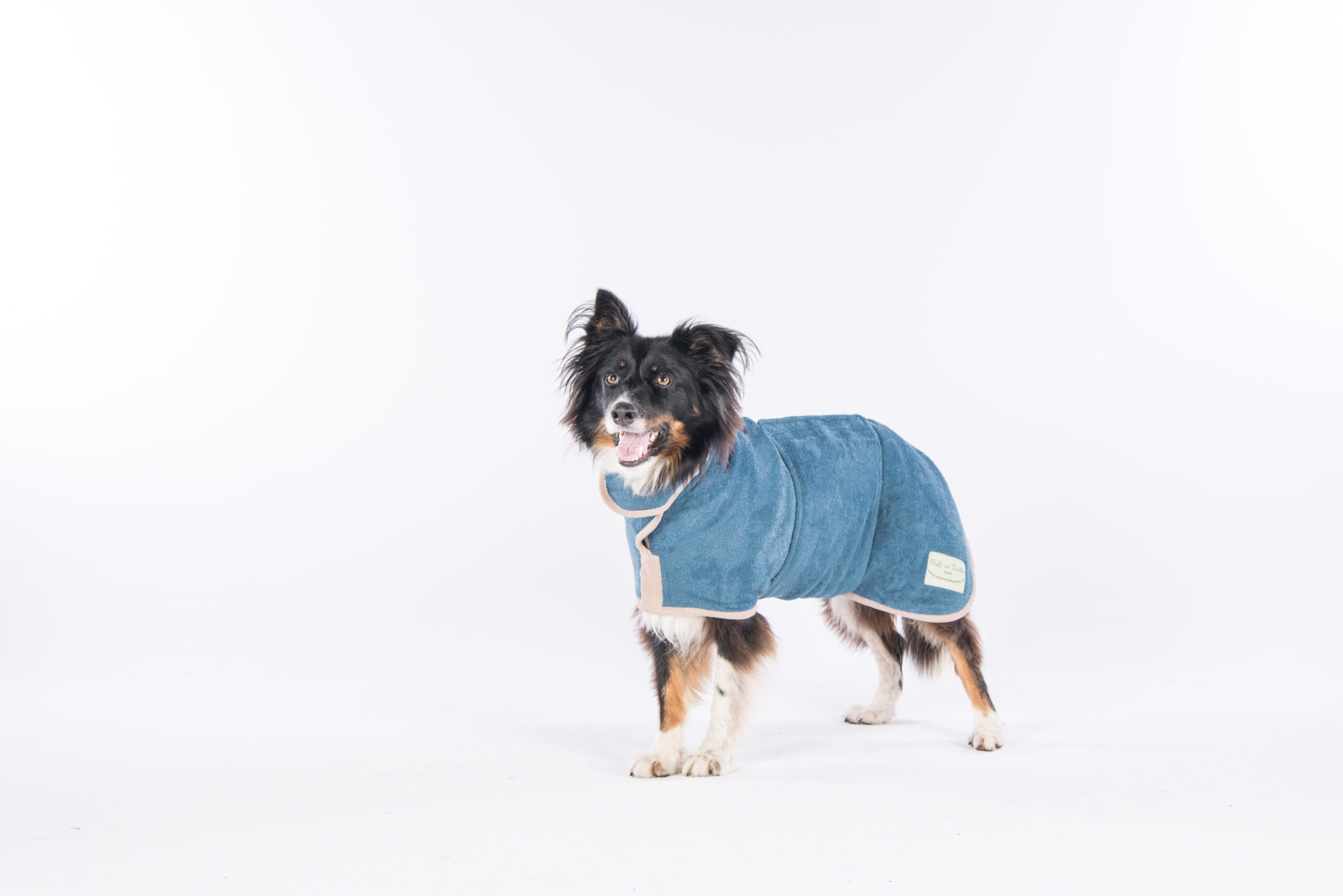 Classic Collection Sandringham Blue Dog Drying Coats